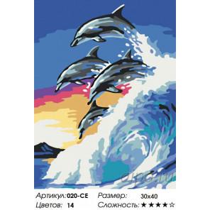 На гребне волны Раскраска картина по номерам на холсте Белоснежка