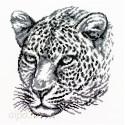 Леопард Набор для вышивания Белоснежка 186-14