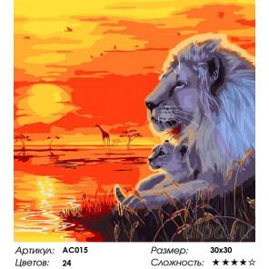 Сложность и количество цветов  Занзибар Раскраска - открытка по номерам с декором Color Kit AC015