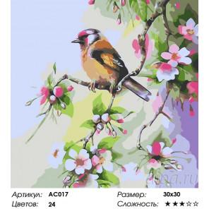 Сложность и количество цветов Весне навстречу Раскраска - открытка по номерам с декором Color Kit AC017