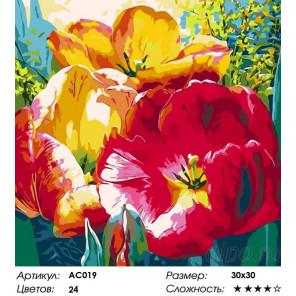 Сложность и количество цветов Нежные тюльпаны Раскраска - открытка по номерам с декором Color Kit AC019
