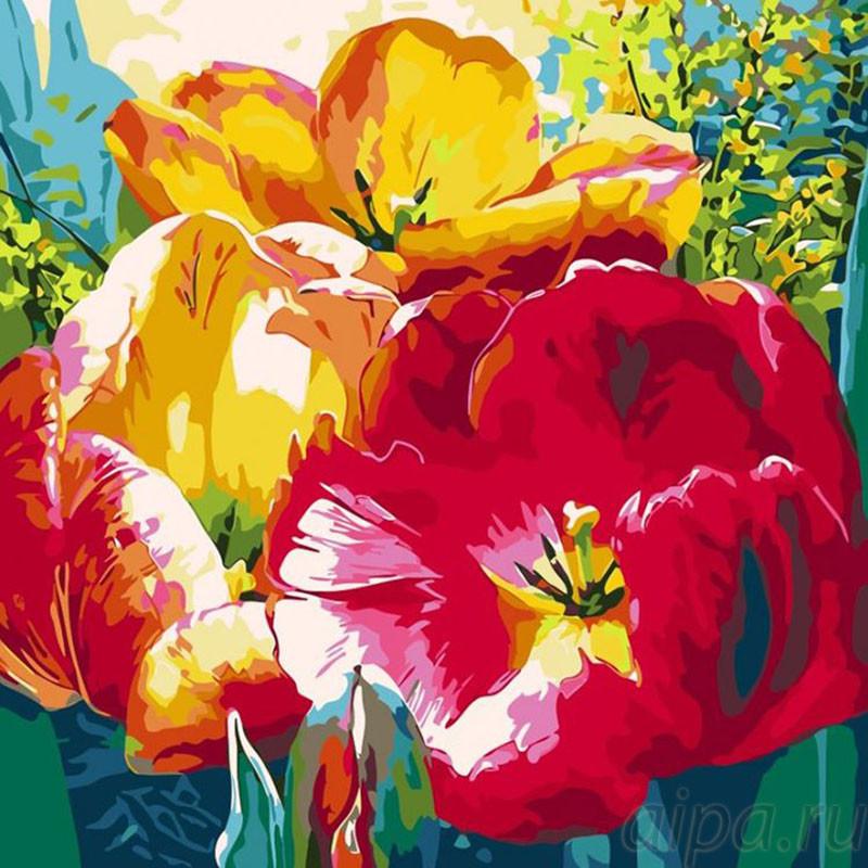 AC019 Нежные тюльпаны Раскраска - открытка по номерам с ...