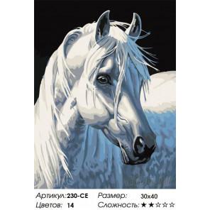 Белая лошадь Раскраска картина по номерам на холсте Белоснежка