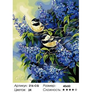 Количество цветов и сложность Синицы в сирени Раскраска картина по номерам на холсте Белоснежка 216-CG
