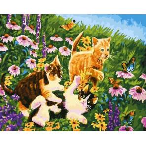 На лужайке Раскраска картина по номерам на холсте