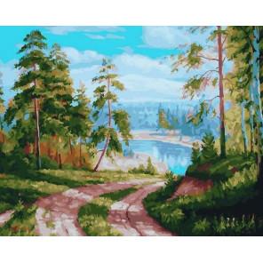 Сосновый лес. Дорога к озеру Раскраска картина по номерам на холсте