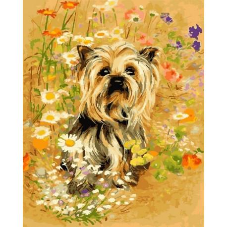 В полевом цвете Раскраска картина по номерам на холсте CG925