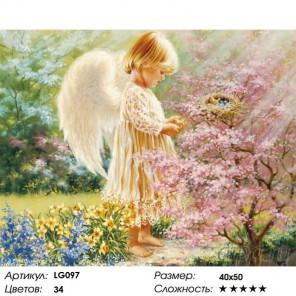 Количество цветов и сложность Ангел с птичкой Алмазная мозаика на подрамнике LG097