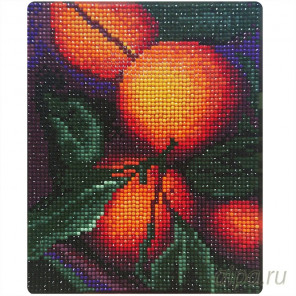 Апельсиновый аромат Алмазная вышивка мозаика Color Kit MP004