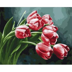Букет тюльпанов Раскраска по номерам на холсте