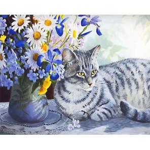 Кот в ромашках Раскраска по номерам на холсте CG873
