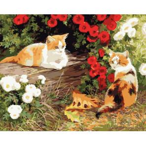 Забавные котята Раскраска по номерам на холсте