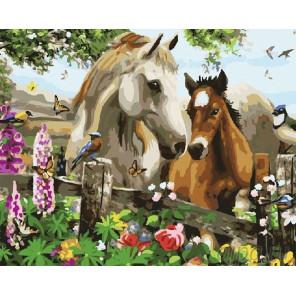 Лошадки Раскраска по номерам на холсте