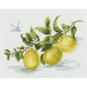 Веточка лимона Набор для вышивания Золотое Руно ФС-006