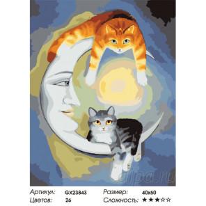 Лунные коты  Раскраска картина по номерам