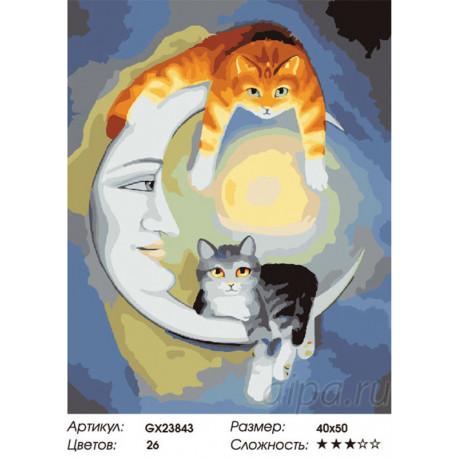 GX23843 Лунные коты Раскраска картина по номерам  картина ...
