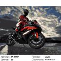 Мотоциклист Раскраска картина по номерам на холсте