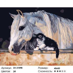 Лошадь и котенок Раскраска картина по номерам на холсте