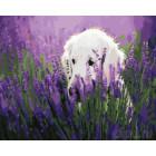 Собака в цветах Раскраска картина по номерам на холсте ZX 20950