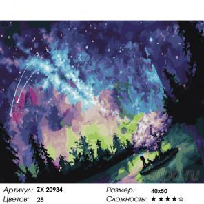 Млечный путь Раскраска картина по номерам на холсте