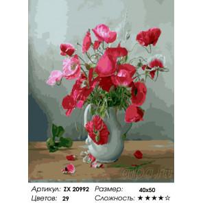 Количество цветов и сложность Радуга парящей красоты Раскраска картина по номерам на холсте ZX 20992