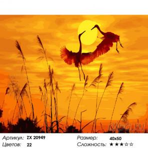 Количество цветов и сложность Журавлиный танец Раскраска картина по номерам на холсте ZX 20949