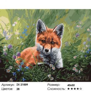 Лисенок Раскраска картина по номерам на холсте