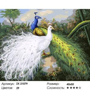 Количество цветов и сложность Величавые павлины Раскраска картина по номерам на холсте ZX 21079