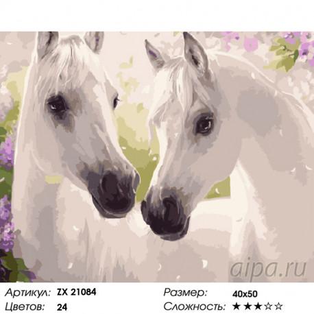 Количество цветов и сложность Белые лошади Раскраска картина по номерам на холсте ZX 21084