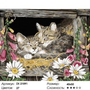 Котята в домике Раскраска картина по номерам на холсте