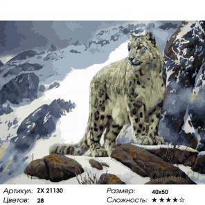 Барс в горах Раскраска картина по номерам на холсте