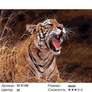 Оскал тигра Раскраска картина по номерам на холсте