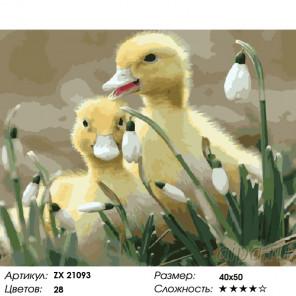 Количество цветов и сложность Утята Раскраска картина по номерам на холсте ZX 21093
