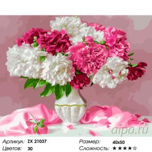 Бело-розовые пионы Раскраска картина по номерам на холсте