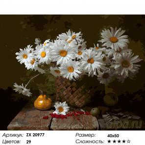 Ромашки в корзинке Раскраска картина по номерам на холсте