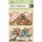 Ракушки Украшения из чипборда для скрапбукинга, кардмейкинга K&Company