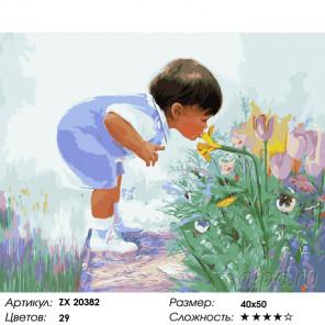 Количество цветов и сложность Знакомство с ароматом Раскраска картина по номерам на холсте ZX 20382