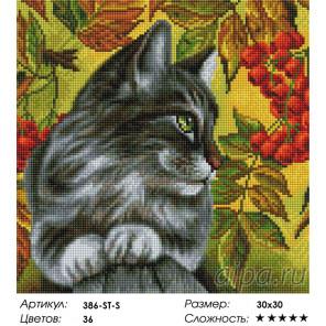 Сложность и количество цветов Отдых в ветках рябины Алмазная вышивка мозаика на подрамнике Белоснежка 386-ST-S