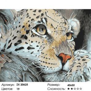 Количество цветов и сложность Леопард на отдыхе Раскраска картина по номерам на холсте ZX 20625
