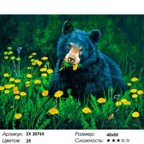 Количество цветов и сложность Медведь в одуванчиках Раскраска картина по номерам на холсте ZX 20765