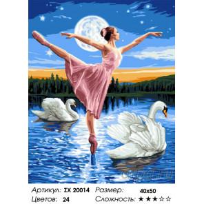 Количество цветов и сложность Лебединое озеро Раскраска картина по номерам на холсте ZX 20014
