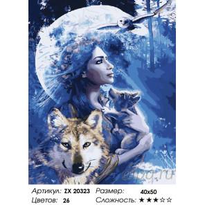 Количество цветов и сложность Волчица Раскраска картина по номерам на холсте ZX 20323