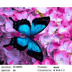 Количество цветов и сложность Синяя бабочка Раскраска картина по номерам на холсте ZX 20593