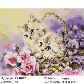 Количество цветов и сложность Котятки Раскраска картина по номерам на холсте ZX 20639