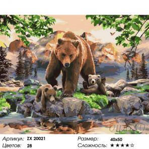 Количество цветов и сложность Медвежата на прогулке Раскраска картина по номерам на холсте ZX 20021