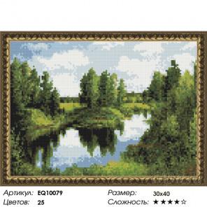 Количество цветов и сложность Озеро в лесу Алмазная вышивка мозаика на подрамнике EQ10079