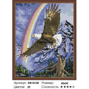 Количесвто цветов и сложность Полет орла Алмазная вышивка мозаика на подрамнике EW10145