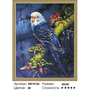 Количесвто цветов и сложность Синий попугай Алмазная вышивка мозаика на подрамнике EW10156