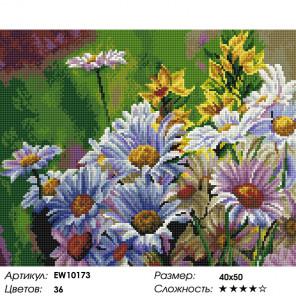 Количесвто цветов и сложность Солнечные ромашки Алмазная вышивка мозаика на подрамнике EW10173