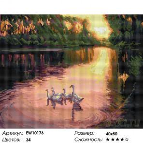 Количесвто цветов и сложность Гуси на пруду Алмазная вышивка мозаика на подрамнике EW10176